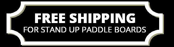 Free Shipping paddle board
